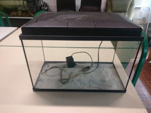 Read more about the article Aquarium 50L